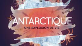Affiche_exposition_antarctique